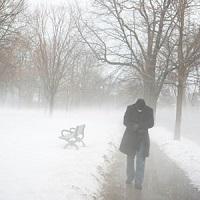 Winter Ice Cold Freezing Temperatures