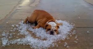 hot-summer-day
