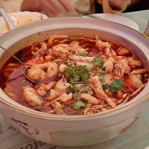 "[REVIEW] ""SZECHUAN GOURMET"", This Food is on FIRE!!"