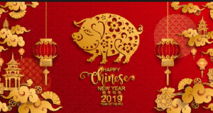 2019-Chinese-New-Year-Pig