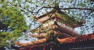 Chinese-Pagoda