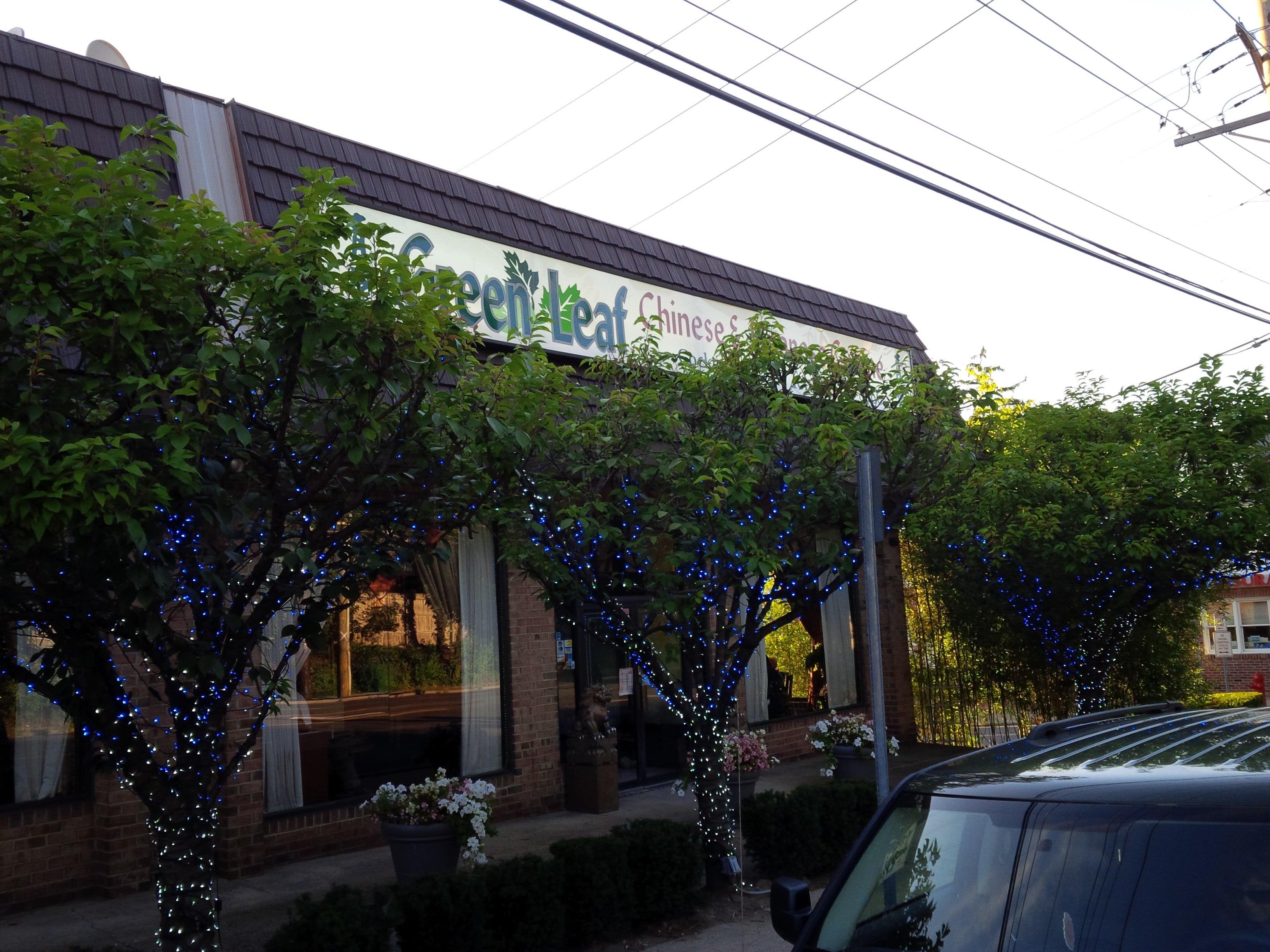 [REVIEW] Green Leaf, Port Washington (Closed 7/2016)