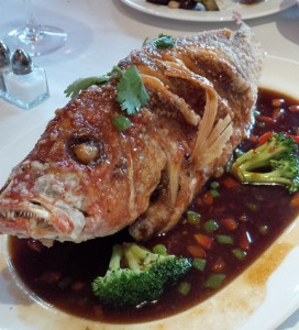 Moonstone Red Snapper Before