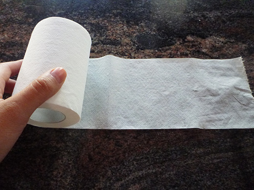 May Your Life Be Like a Roll of Toilet Paper