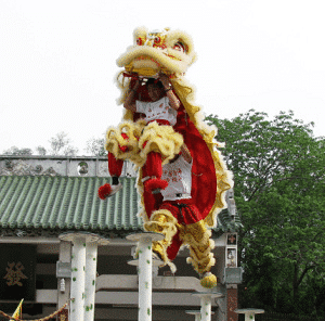lion-dance-closeup
