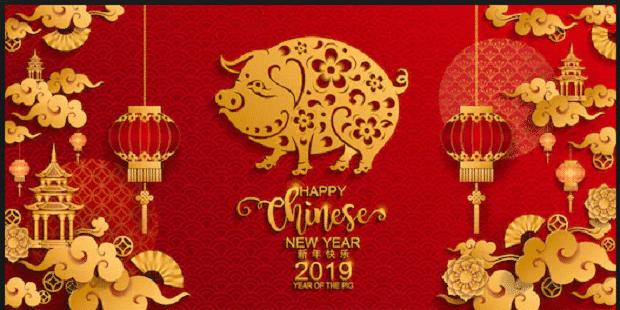 2019-Chinese-New-Year-Pig